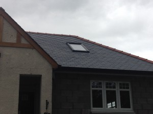 Calidad slates on the roof alternative angle